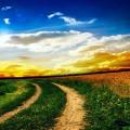 дорога, путь